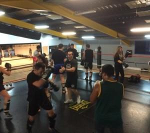 gimnasio boxeo Mostoles